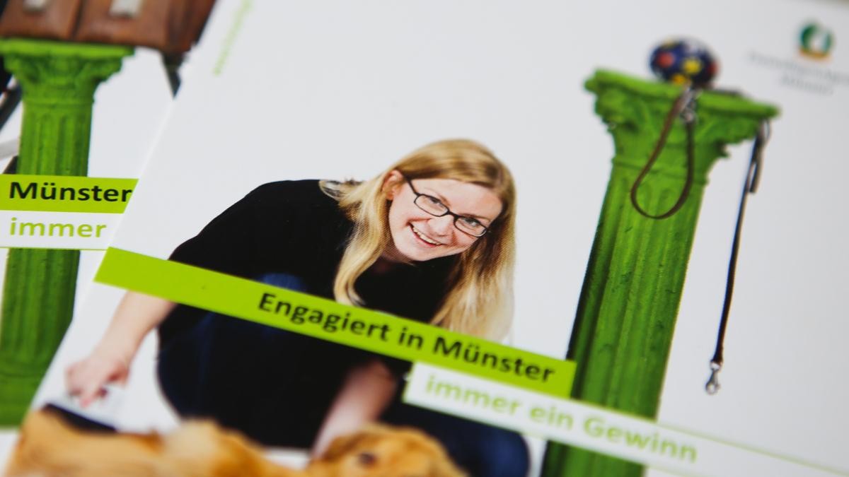 X und Y Design Freiwilligenagentur Muenster